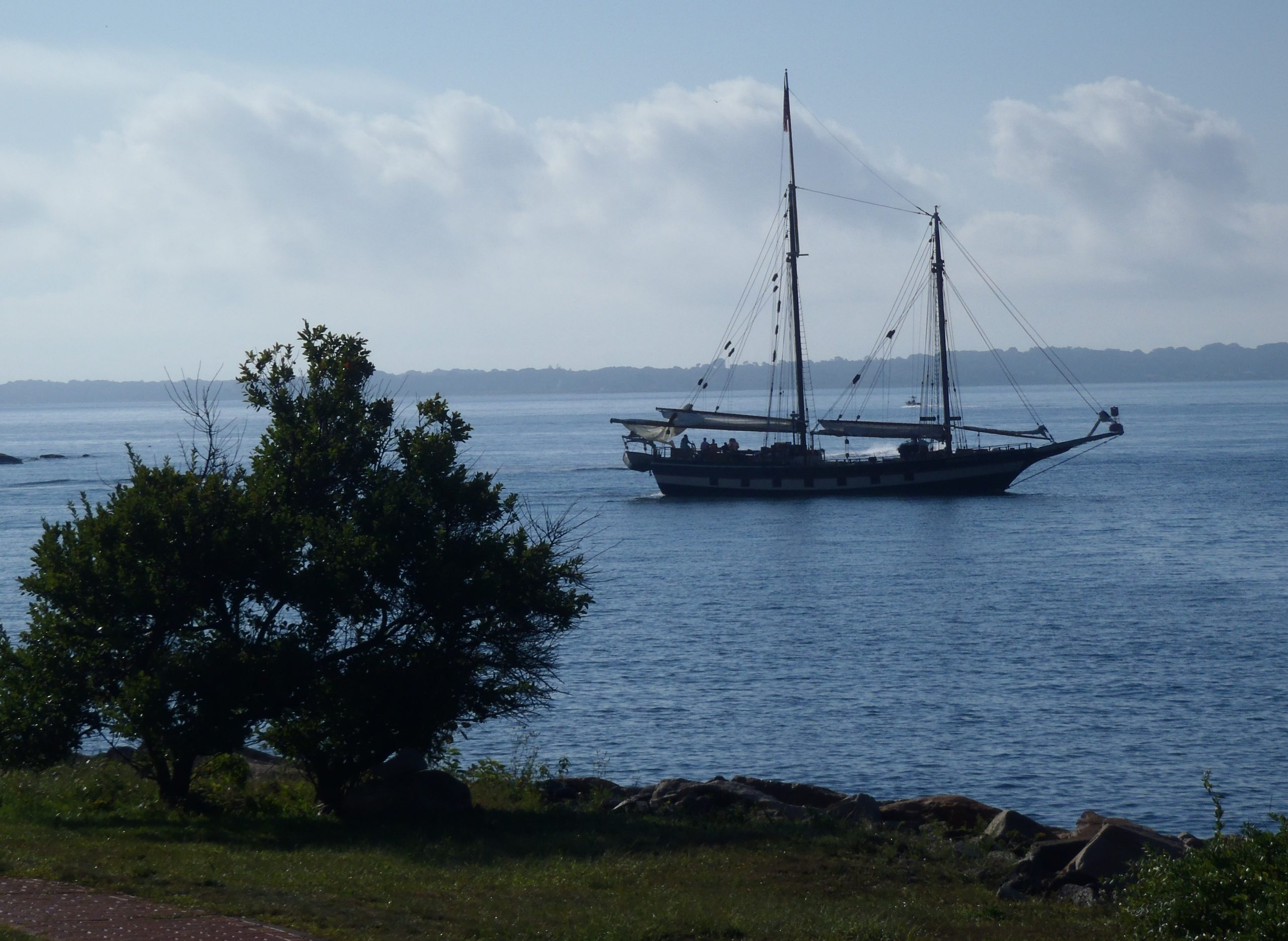 Coastline in foreground with large bush on left.  Blue water beyond with a sailing vessel on the water